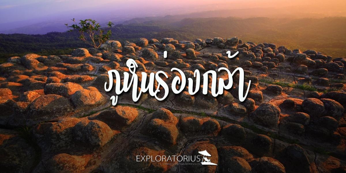 ลานหินปุ่ม ภูหินร่องกล้า แปลกตากับความสวยงามทางธรรมชาติ
