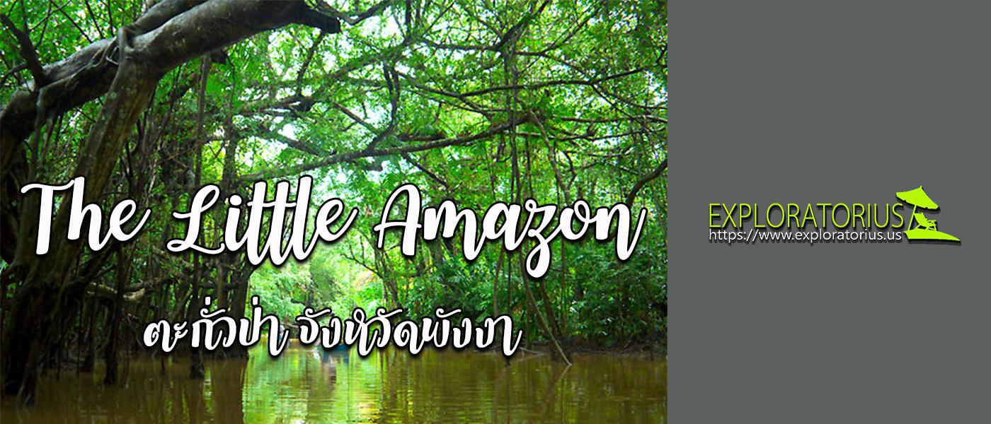 The Little Amazon ตะกั่วป่า